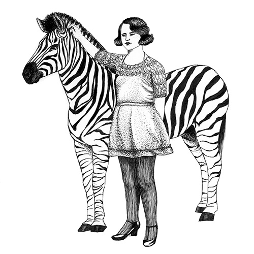 Julie Weißbach drawing copic illustration animal zebra